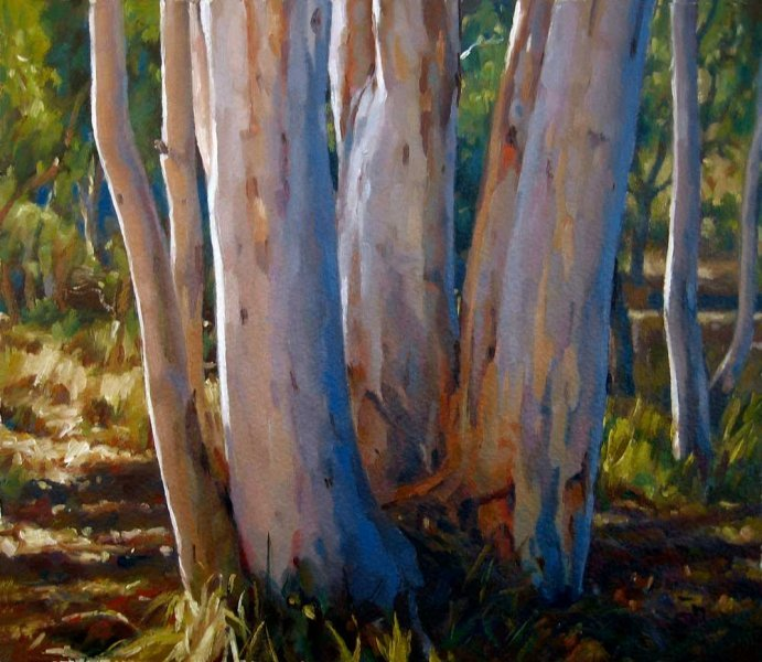 A Group of Eucalypts - oil on prepared paper 30.5x35.5 cm 2012