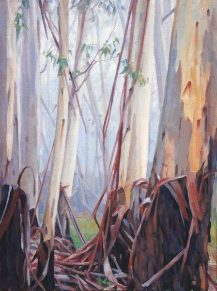 Eucalypts in mist, Blackheath - oil on canvas 41x30.5cm 2013