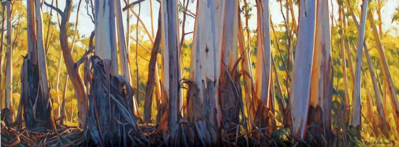 Late Afternoon Gold - oil on canvas 33x89cm 2015