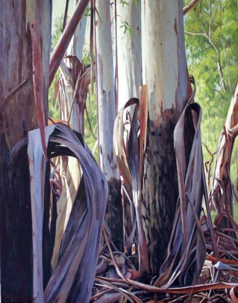 Mountain Gum Gala - oil on canvas 71x56cm 2013