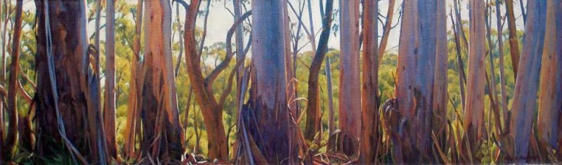 Panoramic Gums - Blackheath - oil on linen canvas on board 34x112cm 2013