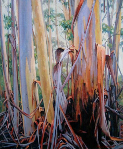 Peeling Eucalypts - oil on canvas 40x49 cm 2012