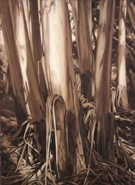 Trunks in Shifting Shadows - oil on gessoed paper 43x32cm 2015