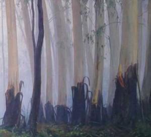 DAWN-MOVING-THROUGH-THE-TREES-2015