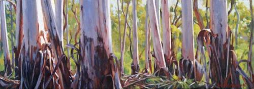 Mountain Gum Vista - oil on canvas 18.5x52.5cm 2015