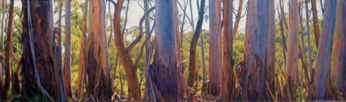 Panoramic Gums - Blackheath - oil on linen canvas on board 34x112cm 2013