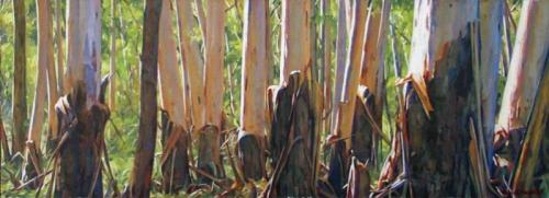 Sunlit Woodland - oil on canvas on board 36.5x100cm 2014
