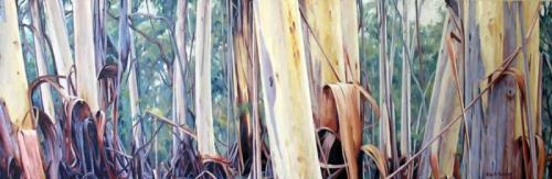 Tall Trunks - Blue Gum Forest - oil on canvas 47x21.5cm 2013