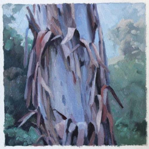Tree study Feb 2017 oil on sealed paper 15x15cm