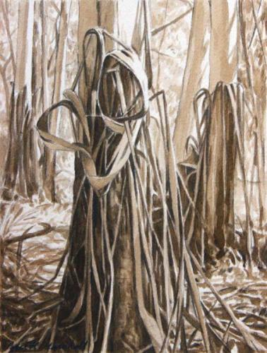 Knotted Bark - pencil and sepia wash on paper  25x18.5cm 2013