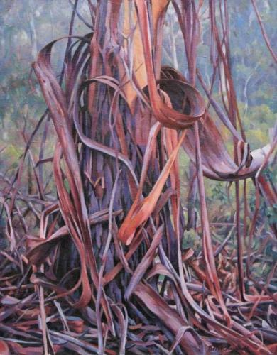 With a Heart of Bark - oil on linen canvas on board 58x46cm 2011